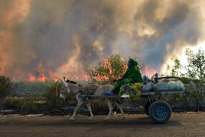 A woman on a cart passes a sugar cane field burning in preparation for the sugar cane harvest near Niono, Mali. Picture: Getty