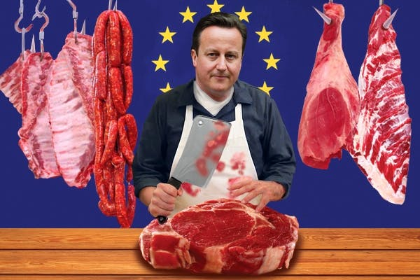 David Cameron delivered his 'red meat' EU speech this morning. Picture: Carla Millar